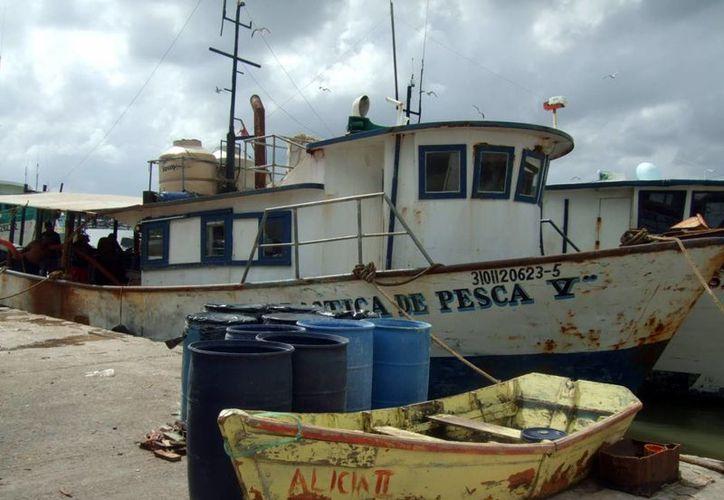 Se espera que los barcos realicen un viaje más que ayude a cerrar las cifras de la temporada de pulpo. (Milenio Novedades)