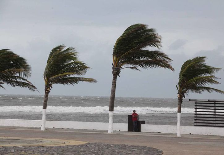 En el Golfo de Tehuantepec se registrarán rachas de viento de hasta 90 km/h. (Archivo/Notimex)