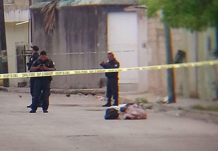 Los cuerpos fueron hallados la mañana del pasado lunes. (Redacción/SIPSE)