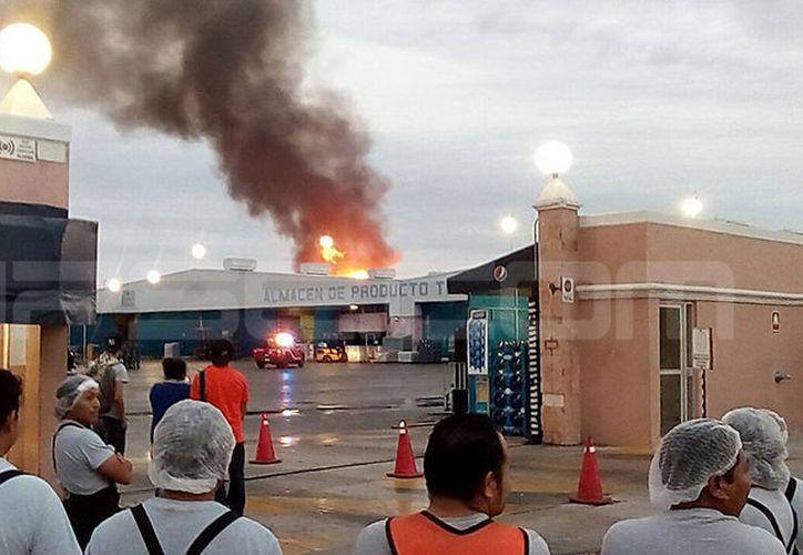 Las llamas alcanzaron varios metros de altura. (SIPSE)