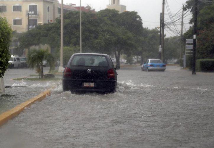 Las placas se desprenden con facilidad cuando el automóvil circula en zonas inundadas. (Israel Leal/SIPSE)