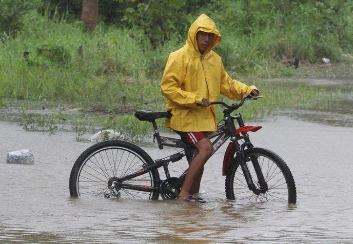Conagua indicó que se esperan lluvias muy fuertes en los estados de Chiapas, Oaxaca y Guerrero. (Archivo/Notimex)