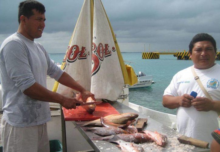 Reportan posible escasez de productos marinos en la isla. (Lanrry Parra/SIPSE)