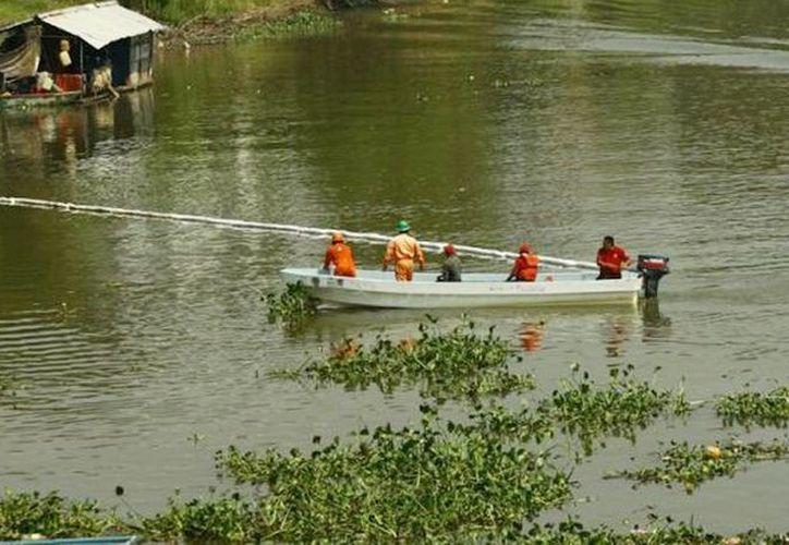 Personal de Pemex colocan vallas para recolectar el aceite de uno de los ríos de Tabasco. (Foto tomada de tabascohoy.com)