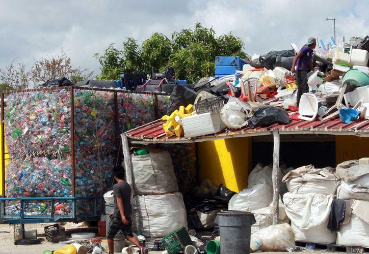 Los últimos dos años también se han creado nuevas plantas de reciclaje. (Luis Soto/ SIPSE)