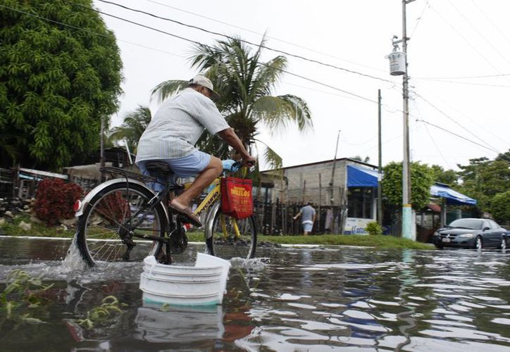 Pretenden atacar el problema de las inundaciones y encharcamientos con colectores pluviales. (Harold Alcocer/SIPSE)