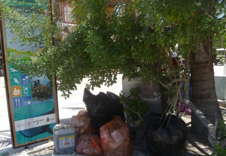 El tema de la basura ha sido un problema en el municipio de Lázaro Cárdenas. (Redacción)