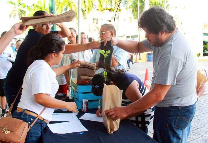 El Ayuntamiento de Mérida regaló árboles a los ciudadanos, durante la Bici-ruta de este domingo 11 de septiembre. (Cortesía)