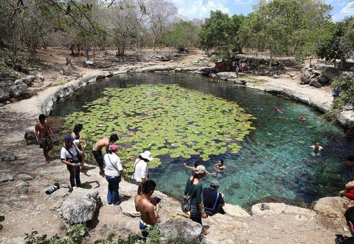Los cenotes, un atractivo para los visitantes y meridanos.(Milenio Novedads)