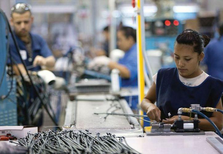 El sector maquilador se crece alrededor de 7% al año, y el personal no llega de la manera que se requiere. (Milenio Novedades/SIPSE)