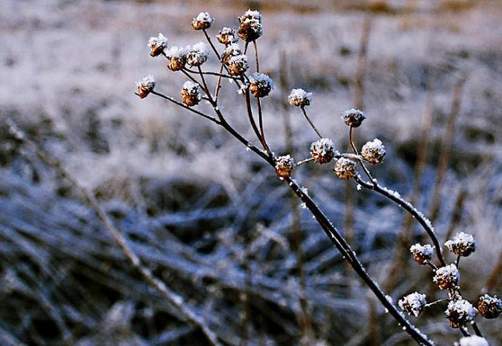 Durango sobre hielo: ¡hasta 14 grados bajo cero!