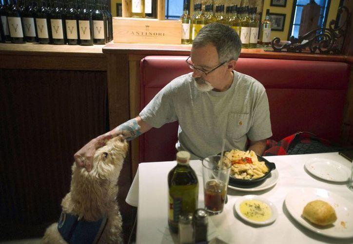 Sean McDonough come en el restaurante Macaroni Grill en South Portland, Maine, con su perro de servicio Bruno a un lado. (Agencias)