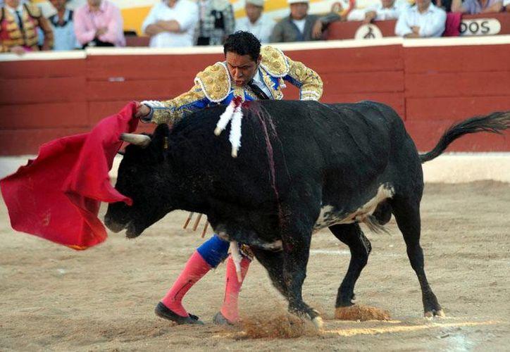 José Luis Angelino busca reivindicarse con la afición taurina de la Plaza México y salir en hombros de la 11ava corrida de la Temporada Grande. (Archivo Notimex)