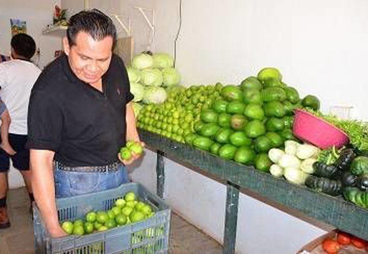 Se contó con la participación de aproximadamente mil 500 productores. (Carlos Horta/ SIPSE)