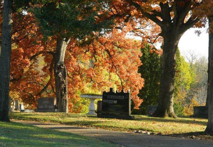 El panteón Springdale es considerado como una de las áreas más prístinas y hermosas para correr en el centro de Illinois. (Facebook/Springdale Cemetery & Mausoleum)