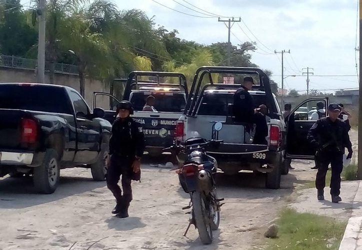 Unas 10 patrullas de Seguridad Pública implementaron el operativo. (Eric Galindo/SIPSE)