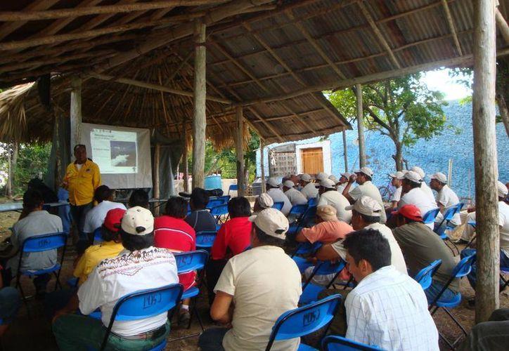 Alrededor de 200 brigadistas rurales que se hallan en espera de equipamiento para el combate a incendios forestales. (Redacción/SIPSE)