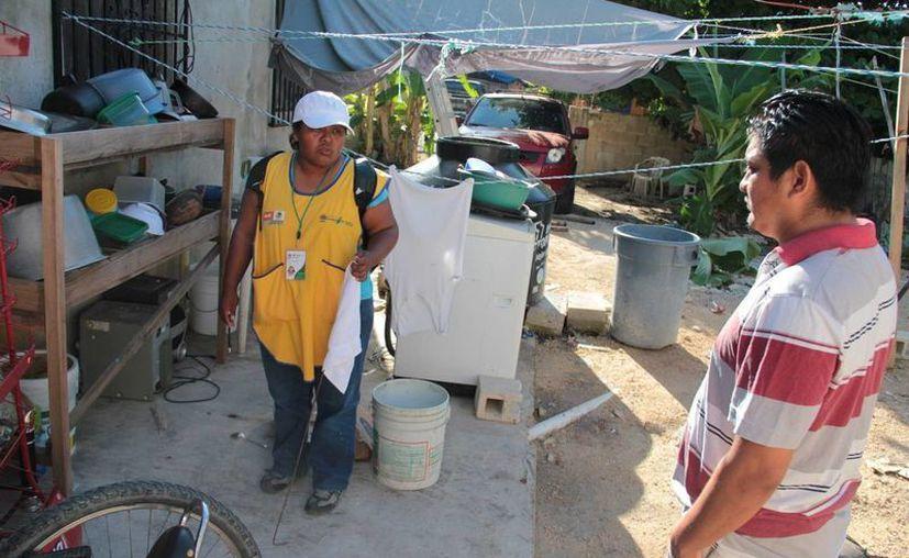 Anuncian acciones para prevenir la proliferación del dengue. (Rossy López/SIPSE)