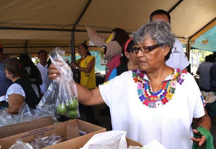 """Durante la jornada 16 del programa """"Recicla por tu bienestar"""", se repartieron unos 70 kilos de limón. (Milenio Novedades)"""