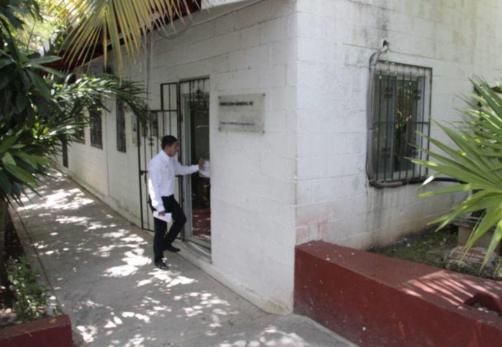 Las facultades de la Dirección de Ecología municipal se limitan a recibir denuncias y canalizarlas hacia la Profepa, asegura su titular. (Sergio Orozco/SIPSE)