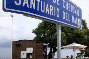 Santuario del Manatí lucha por sobrevivir
