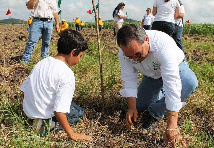 Las autoridades desarrollan proyectos de protección al medio ambiente. (Edgardo Rodríguez/SIPSE)