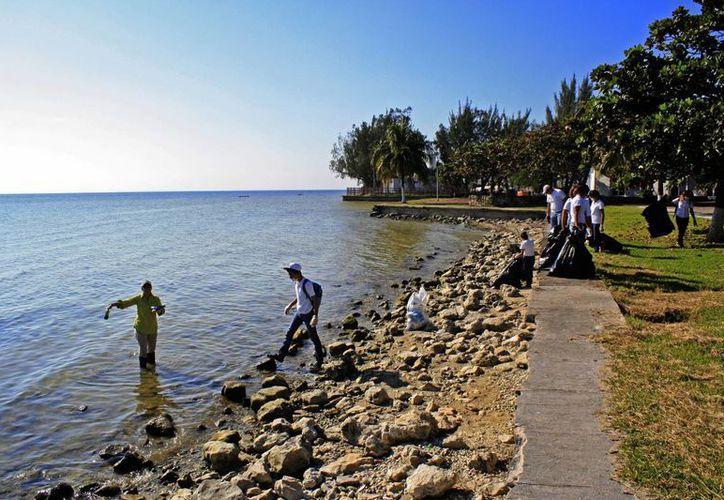 Las acciones en pro de la conservación y cuidado del litoral capitalino continuarán. (Harold Alcocer/SIPSE)