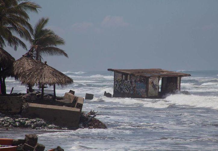 En una temporada considerada normal por la NOAA se forman una media de 12 tormentas tropicales. (Archivo/EFE)