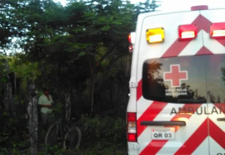 Se negó rotundamente a ser trasladado a algún hospital de la ciudad. (Redacción/ SIPSE)