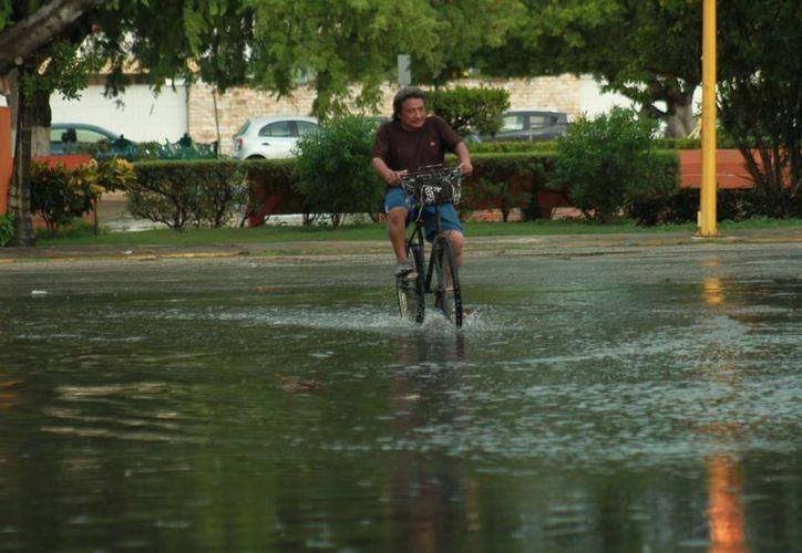 Las lluvias de este jueves pueden estar acompañadas de actividad eléctrica y rachas de viento fuerte en zonas de tormenta. (Jorge Acosta/ Milenio Novedades)