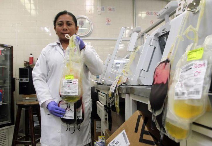 Las instituciones llevan un estricto protocolo antes de aplicar una transfusión de sangre. (Milenio Novedades)