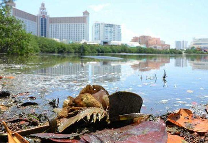 Activistas, voluntarios y estudiantes de nivel medio superior  retiraron más de mil 400 kilogramos de desperdicios de la Laguna Nichupté. (Foto/Internet)