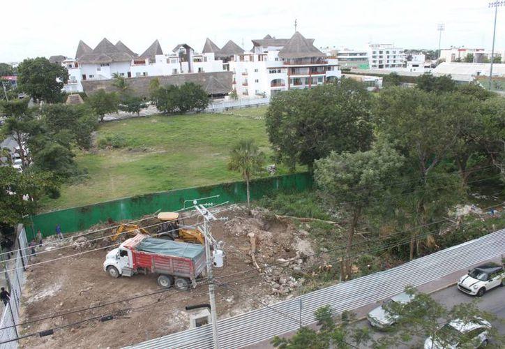 Vecinos y ambientalistas denunciaron el desmonte de vegetación protegida en en el fraccionamiento Quintas del Carmen. (Daniel Pacheco/SIPSE)