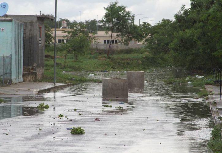 """El efecto """"sifón"""" es cuando el agua comienza a fluir por todos los espacios de los tubos del sistema de drenaje sanitario. (Carlos Horta/SIPSE)"""