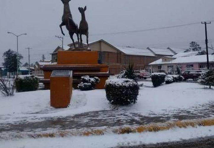 Autoridades de Sonora han declarado a 63 municipios en estado de emergencia debido a las bajas temperaturas. (Twitter/La Jornada)