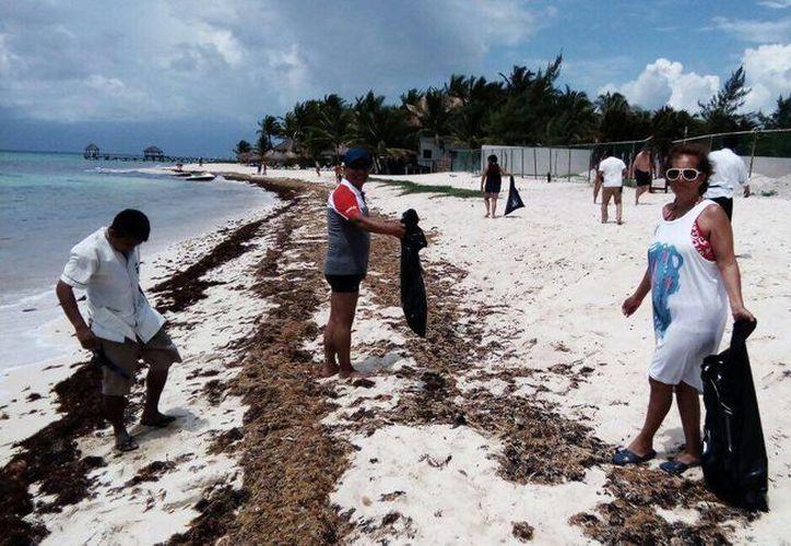 Los huéspedes del hotel Petit Lafitte limpian una vez a la semana las playas cercanas a Xcalacoco. (Octavio Martínez/SIPSE)