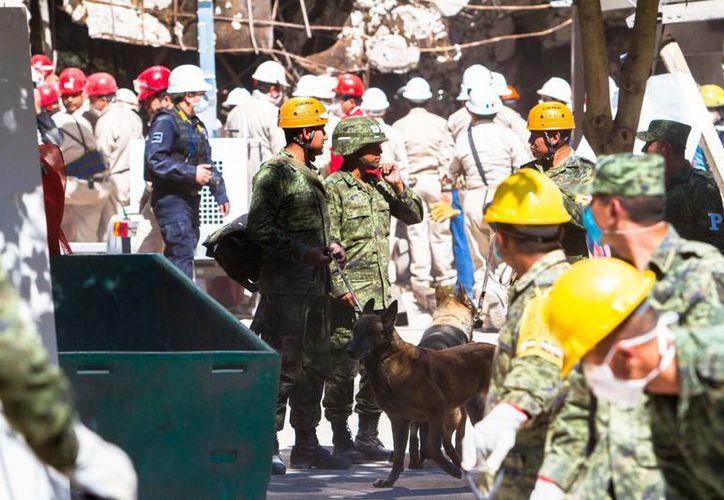 La explosión ha dejado 37 muertos. (Notimex)