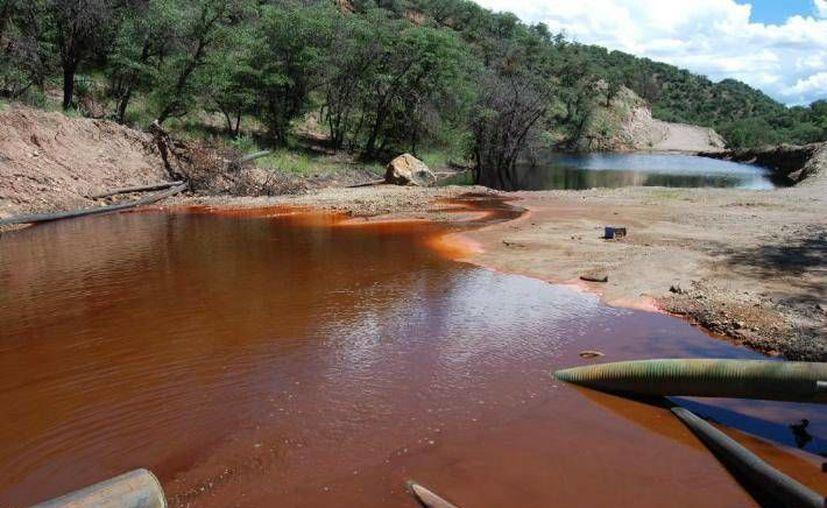 En 2014, un derrame de la mina Buenavista del Cobre contaminó severamente el afluente de los ríos Sonora y Bacanuchi. (Archivo/AP)