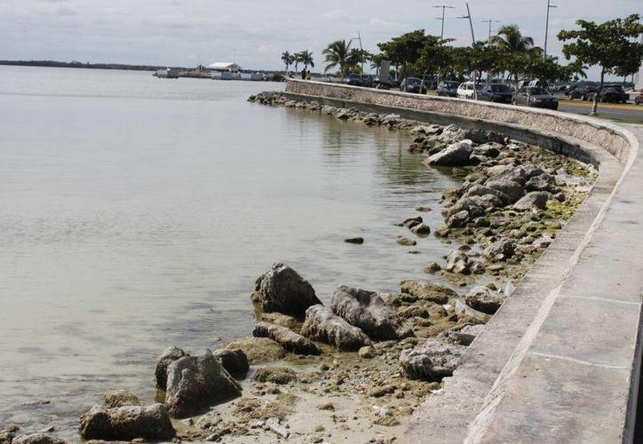 Se hará referencia al problema del derrame de combustible al manto freático de la zona centro de Chetumal, que llegó a la bahía. (Harold Alcocer/SIPSE)