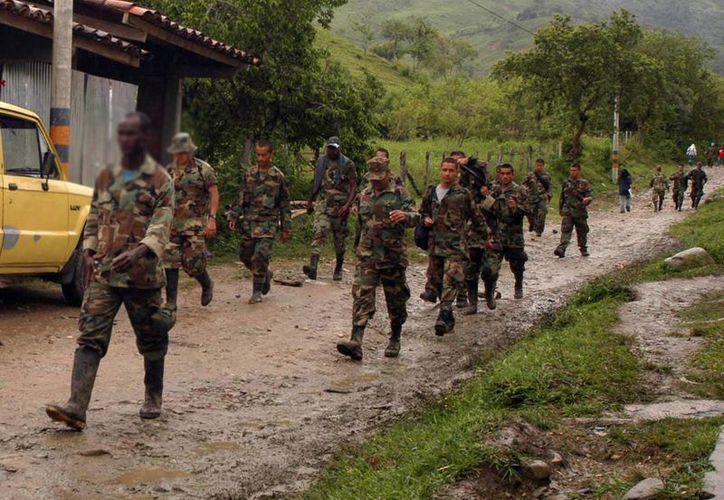 La incautación de estas ocho mil 655 hectáreas forma parte de una segunda fase en el decomiso de bienes de las FARC. (Archivo/EFE)