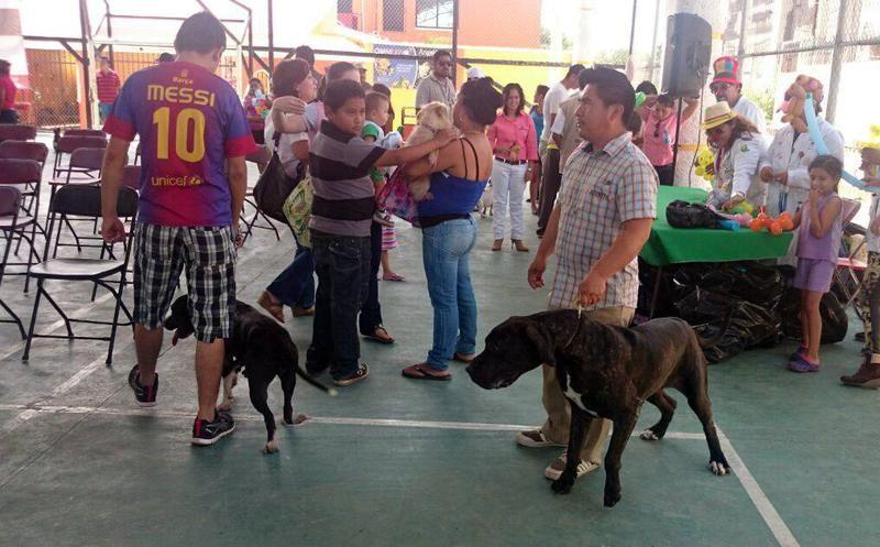 La actividad se llevará a cabo del 24 al 30 próximos en el municipio sureño de Santa Elena
