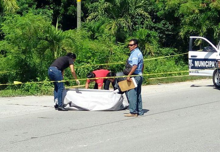 Los hechos se suscitaron la mañana del pasado jueves, sobre el bulevar Luis Donaldo Colosio. (Eric Galindo/SIPSE)