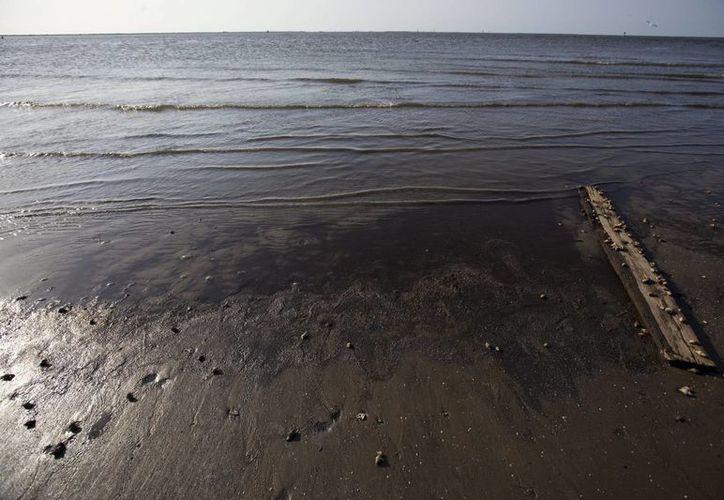 """La """"zona muerta"""" es el resultado de la afluencia en el Golfo de las aguas de la cuenca del río Misisipi. (EFE/Archivo)"""