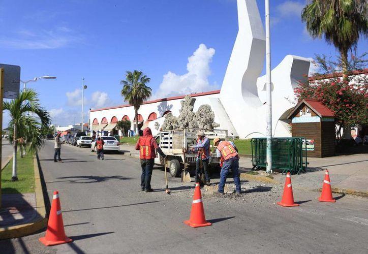 Académicos reconocen que es importante que se esté remodelando la avenida De los Héroes con mano de obra local. (Harold Alcocer/SIPSE)