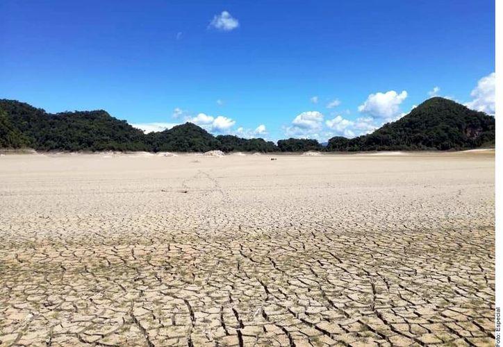 Metzabok fue decretado en 1998 como área natural de protección de flora y fauna para contribuir con el aprovechamiento y conservación de los recursos naturales, con una extensión de 3 mil 368 hectáreas. (Agencia Reforma)