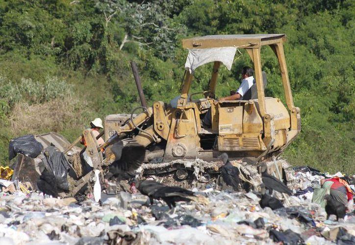 Con los recursos las autoridades ambientales buscan dar solución a los rellenos sanitarios del estado en este año. (Archivo/SIPSE)