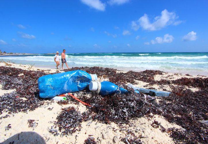 """Las playas de """"Punta Sur"""" son las más limpias de la isla. (Gustavo Villegas/ SIPSE)"""