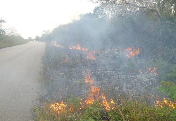 Piden a los campesinos reportar cualquier conato de incendio. (Raúl Balam/SIPSE)