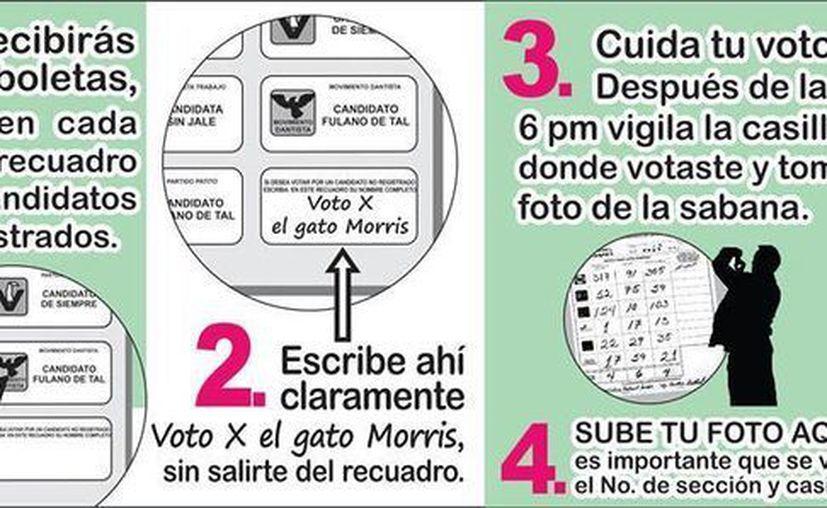 Exhortan a la ciudadanía a cuidar su voto por el felino. (Facebook)