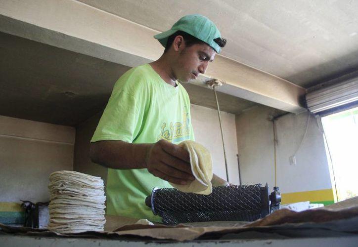 Las ventas de tortilla en Chetumal han disminuido hasta un 10%. (Harold Alcocer/SIPSE)